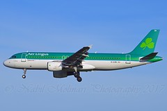 """St.Maura / Máire"" Aer Lingus EI-EZW Airbus A320-214 cn/1983 wfu 06. Mar 2017 due OO-SNI Brussels Airlines @ EBBR / BRU 25-02-2017 (Nabil Molinari Photography) Tags: stmauramáire aer lingus eiezw airbus a320214 cn1983 wfu 06 mar 2017 due oosni brussels airlines ebbr bru 25022017"