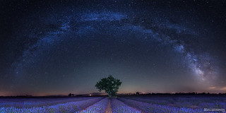[Explore 18/06/2018] Voie Lactée à Valensole - Provence - France