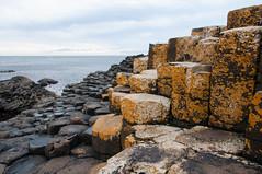 Giant's Causeway Rocks 3 (Dr_Moriarty) Tags: 2017 europe giantscauseway ireland northernireland vacation