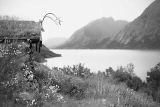 Deep in the Norwegian wilderness