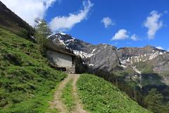 Ceintaneire (bulbocode909) Tags: valais suisse mex ceintaneire montagnes nature printemps paysages alpages écuries chemins nuages neige vert bleu arbres forêts cimedelest groupenuagesetciel
