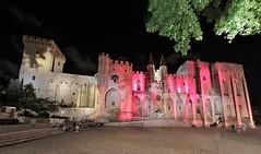 Palais des Papes - Avignon (hervétherry) Tags: france paca provencealpescôtedazur vaucluse avignon canon eos 7d efs 1022 palais papes nuit alterarosa