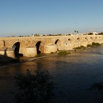 Córdoba 2018 (206) thumbnail
