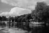 Catching some fresh air (mripp) Tags: art vintage retro lake old see black white mono monochrom nature landscape outside oberpfalz bavaria germane europe song rx1rii