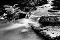 (a_radical_eye) Tags: neutraldensity longexposure daylight slow slowphotography nature stream brook quiet peace peaceful aradicaleye canon 7d prime eos bnw bw blackandwhite