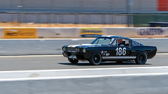 Shelby Mustang (lennycarl08) Tags: gt350 mustang shelby sonomacounty sonomahistorics ford car
