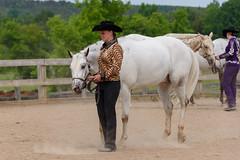 JBC_4836.jpg (Jim Babbage) Tags: krahc horseshow appaloosa horses 2018