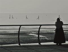 DSC01350 (Shan B.) Tags: fleetwood silhouette mono beach seaside coastal alone