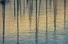 Sunlit Tapestry (joshtilley) Tags: ramsgate ramsgateharbour harbour ramsgatekent kent eastkent thanet ramsgatethanet thanetkent reflections water harbourreflections reflection boats boatreflection boatreflections masts boatmast mast boatmasts ripples
