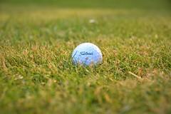 golf bal (victor de buck) Tags: golf green