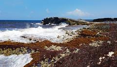 El Mirador Lookout, Cozumel Mexico (Gail K E) Tags: mexico cozumel elmiradorlookout elmirador yucatan quintanaroo beach coralreef mesoamericanreef