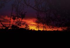 Sunset at Hutton Row (russell_w_b) Tags: sunset cumbria cumberland agfaprecisa slidefilm pentaxmx