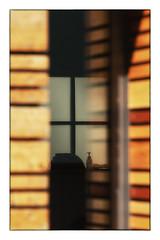 things behind the window (Armin Fuchs) Tags: arminfuchs würzburg window wall stripes reflection