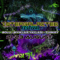 "INTERGALACTED FESTIVAL front - web • <a style=""font-size:0.8em;"" href=""http://www.flickr.com/photos/132222880@N03/40835595350/"" target=""_blank"">View on Flickr</a>"