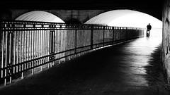 underworld [EXPLORE 2018-06-09] (pix-4-2-day) Tags: bridge brücke gegenlicht light licht dunkel darkness railing geländer cyclist radfahrer fahrrad bicycle mann man osnabrück unterführung wasser water pix42day