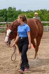 JBC_5098.jpg (Jim Babbage) Tags: krahc horseshow appaloosa horses 2018