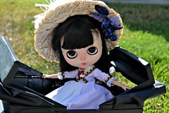 """Taking a Carriage Ride • <a style=""""font-size:0.8em;"""" href=""""http://www.flickr.com/photos/52244399@N05/41077929200/"""" target=""""_blank"""">View on Flickr</a>"""