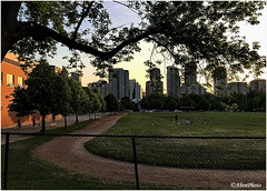 180528 Post-Dinner Walk (11) (Aben on the Move) Tags: willowdale northyork toronto canada walk outdoors