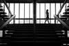 audimax (GeoMatthis) Tags: stair stairs treppe street architecture architektur simple geometric symmetry symmetric schwarzweis simpel simplicism composition symmetrie schatten shadow licht light blackandwhite black blackwhite bw gray white sw schwarz schwarzundweis weis grau people menschen frau porträt portrait girl woman silhouette urban city stadt kiel germany deutschland minimal minimalism minimalistisch minimalismus walking walk bewegung movement reduced reduziert window windows lines perspektive perspective