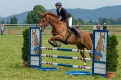 A9907490_s (AndiP66) Tags: springen pfingstspringen pfingsten pfingstmontag ettiswil 2018 21mai2018 mai pferd horse schweiz switzerland kantonluzern cantonlucerne concours wettbewerb horsejumping equestrian sports springreiten pferdespringen pferdesport sport sony alpha sonyalpha 99markii 99ii 99m2 a99ii ilca99m2 slta99ii sony70400mm f456 sony70400mmf456gssmii sal70400g2 amount andreaspeters