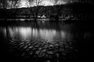 Flood water noir