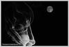 LA LUNA Y EL HUMO.  THE MOON AND SMOKE. NEW YORK CITY. (ALBERTO CERVANTES PHOTOGRAPHY) Tags: moon luna smoke monochrome blanconegro blackwhite photoart diseño design logo photography retrato portrait photoborder luz light color colores colors brightcolors brillo bright blackbackground blanco white negro black dark satelite satellite imaginative creation imagination impressivephoto colornight lightcolor impressive circle astronomy round nature serene supermoon fullmoon celestial space cosmic fire streetphotography flame fuego arte creative