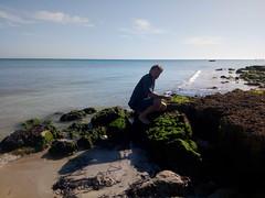 IMG_20180228_100233 (reinh_3008) Tags: tunisia tunesien tunesia beach impression traces human environment nature