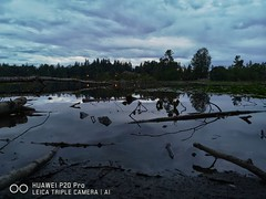 Gross lake. (thnewblack) Tags: huawei p20 p20pro leica leicaoptics android smartphone outdoors nature milllake britishcolumbia f18 10mp lowlight