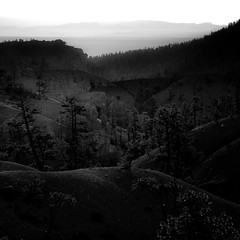 In Canyons 239 (noahbw) Tags: brycecanyon d5000 nikon utah autumn blackwhite blackandwhite bw canyon desert erosion fog foggy forest hills horizon landscape light mist misty monochrome natural noahbw quiet rock shadow sky square still stillness stone sunlight trees woods