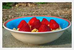 Local Berries - fresh picked (Timothy Valentine) Tags: 2018 food peerview 0618 cereal fbpost strawberry fruit home eastbridgewater massachusetts unitedstates us