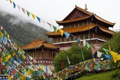 Buddhist monastery, Sichuan, China (valerian.guillot) Tags: planart1450 planart1450ze planar zeiss carlzeiss ze planar1450 china  sichuan trekking buddhist buddhism temple monastery mist cloud rain
