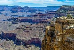 _D804101-Pano.jpg (David Hamments) Tags: grandcanyonnationalpark arizona verticalpanorama southrim day2