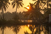 Sunrise over the small holding, Munroe Island, Kerala, India (Steve Weaver) Tags: munroe island kerala india godsowncountry water reflections coconut palms palm tree green lush sun sunrise golden lightman dawn shed shack wooden hut