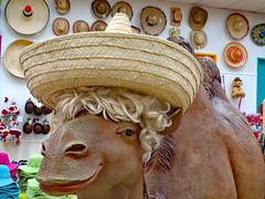 Hat And Wig On A Camel. (dccradio) Tags: hamer dillon sc southcarolina dilloncounty southoftheborder touristattraction indoors inside store hatstore hatsoftheworldstore retail shopping camel sombrero strawhat hat wig statue camelstatue hats wall canon powershot elph 520hs