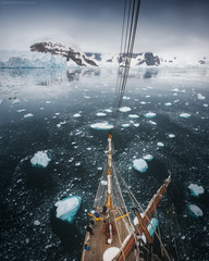 Antarctica Dream (Korzhonov Daniil) Tags: extras antarctica tall ship penguin penguins animals nikon gitzo lucroit iceberg