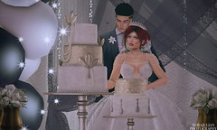 11. Kirsten & Sierra - Cake Cutting (Nora Mae Julian) Tags: secondlife sl wedding marriage venue serendipityweddings weddingsbyleona photoshop edit artsy