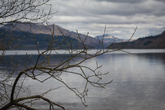 #5 Lomond (music_man800) Tags: scotland scottish road trip tour roadtrip uk united kingdom loch lomond lake water body trossachs nature natural scenery scenic beautiful pretty rugged mountains mountainous reflections mirror still calm tranquil morning april trees branches silhouette clouds snow banks bonnie drive landscape light lighting grey cloudy overcast canon 700d adobe lightroom creative edit beach photography focus spring buds bloom