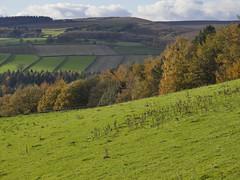 Bradfield (1Nine8Four) Tags: bradfield sheffield countryside england northernengland yorkshire southyorkshire uk unitedkingdom gb britain greatbritain europe eu panasonic panasonicgx8 gx8 micro43 micro 1260mm summer holiday