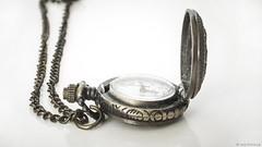 Pocket Watch (2) (WestMaue) Tags: pocket pocketwatch watch time clock old antique photo photography stilllife часы карманныечасы время предметнаясъемка
