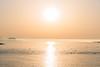 DSC_4277.jpg (八戸ノ本室) Tags: 青森県 種差海岸 蕪島 八戸市