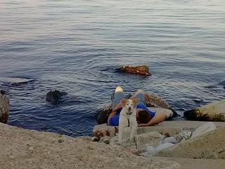 22/52 Nadja at Lake Michigan