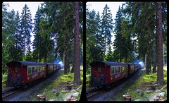 Near Schierke 3-D / CrossView / Stereoscopy / HDRaw (Stereotron) Tags: sachsenanhalt saxonyanhalt ostfalen harz mountains gebirge ostfalia hardt hart hercynia harzgau zug train waggon historisch brockenbahn harzer schmalspurbahn wald europe germany deutschland crosseye crossview xview pair freeview sidebyside sbs kreuzblick 3d 3dphoto 3dstereo 3rddimension spatial stereo stereo3d stereophoto stereophotography stereoscopic stereoscopy stereotron threedimensional stereoview stereophotomaker stereophotograph 3dpicture 3dimage twin canon eos 550d yongnuo radio transmitter remote control synchron kitlens 1855mm tonemapping hdr hdri raw