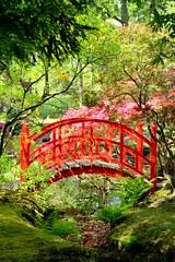 The Red Bridge (barbara_donders) Tags: natuur nature spring lente landschap landscape japanese japans bridge brug rood red green groen beautiful magical mooi prachtig tuin garden denhaag thehague