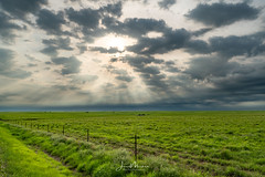 Sun Peaks Through (Wits End Photography) Tags: view flinthills prarie landscape kansas nature scenic grassland rural country picturesque natural outdoor outside sunrise sunray field