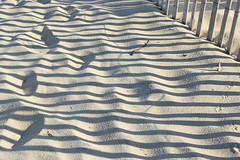 Zebra Beach (meg21210) Tags: beach sand nc northcarolina kittyhawk obx outerbanks fence coast shadow shadows abstract shore