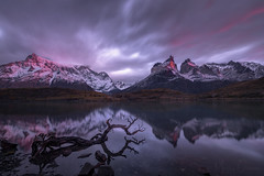 Resonating Stillness (Maddog Murph) Tags: patagonia chile mountains sunrise torres del paine south america peak snow cloudy alpineglow glow aspenglow pink first light reflection staff wood arch crags peaky mist misty fog foggy cloud storm