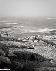 A foggy morning on the Atlantic (DelioTO) Tags: 4x5 architecture blackwhite canada d23 f317 lake landscape natparks novascotia pinhole rain rpx100 rural