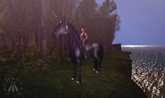 I have no idea how long I'll stay the travelling companion of a dark unicorn. (gwen.enchanted) Tags: 7deadlys{k}ins aisling anatomy argrace bliensenmaitai dyisi gauze lakrya laq maitreya senzafine wrenworks