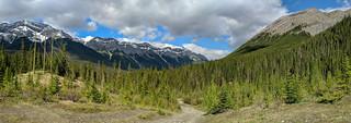 Goat Creek Trail Head