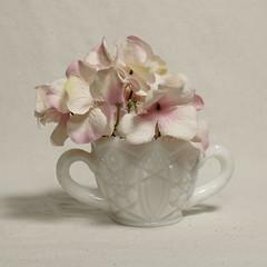 Milk Glass sugar bowl with Flowers (N.the.Kudzu) Tags: tabletop stilllife depressionglass milkglass sugar bowl flowers canon70d canoneflens flash primelens
